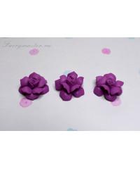 Розы маленькие лиловые