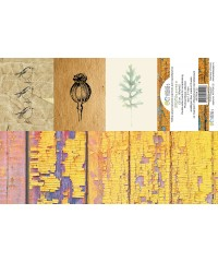 Набор карточек PHOTOсинтез